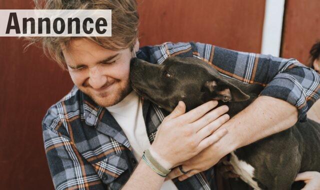 En mand krammer sin hund